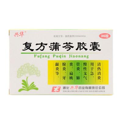 兴华 复方蒲芩胶囊 0.24g*36粒/盒