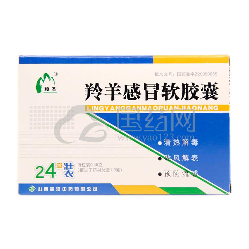 颐圣 羚羊感冒软胶囊 0.45g*24粒/盒