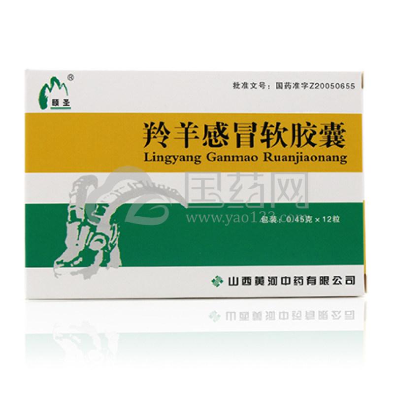 颐圣 羚羊感冒软胶囊 0.45g*12粒/盒