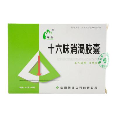 颐圣 十六味消渴胶囊 0.4g*48粒/盒