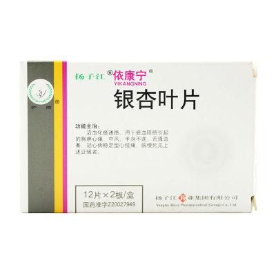 依康宁 银杏叶片 24片/盒