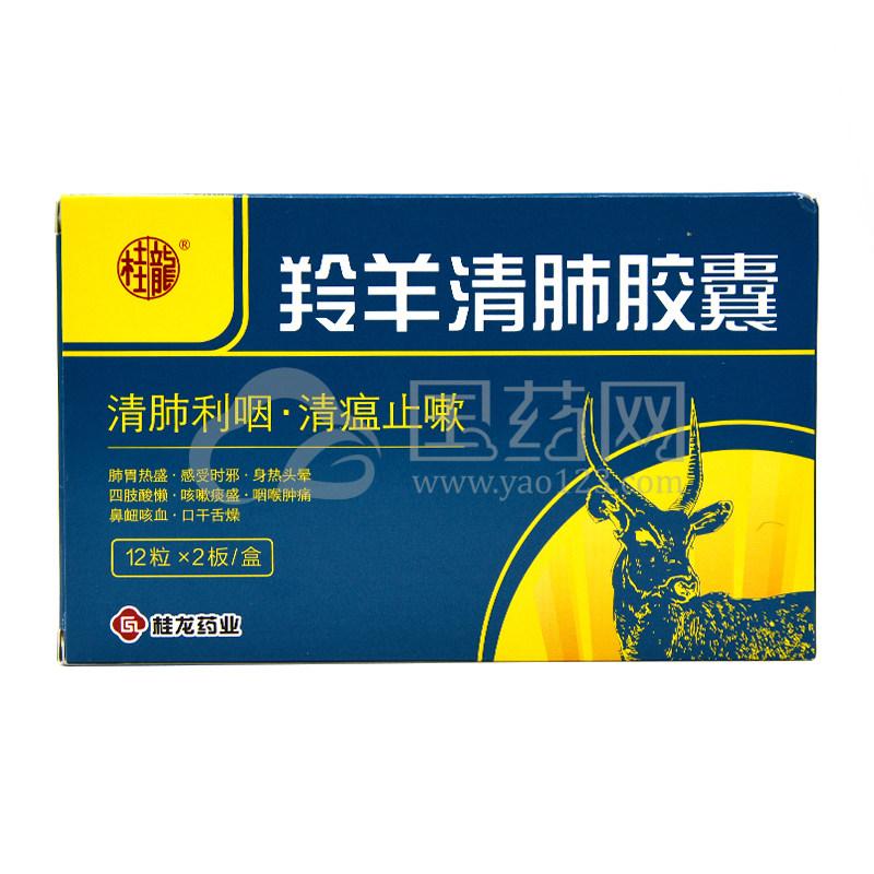 桂龙 羚羊清肺胶囊 0.3g*12粒*2板/盒