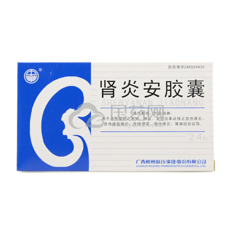 中华 肾炎安胶囊 0.3g*24粒/盒
