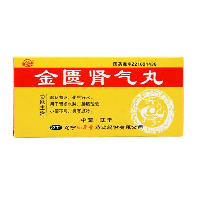 溪康 金匮肾气丸 6g*10丸/盒
