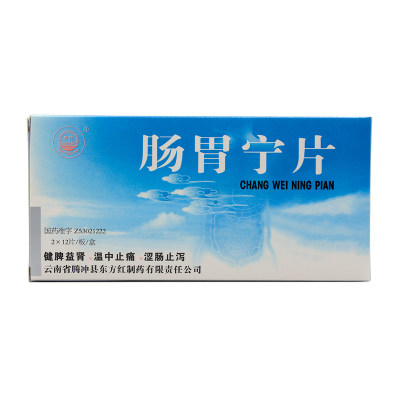 东方 肠胃宁片 0.3g*24片/盒
